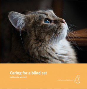 blind cat book cover